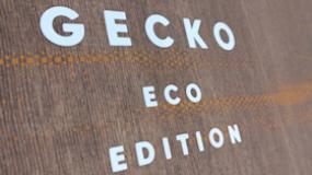 FANATIC GECKO ECO...A real Head-Turner